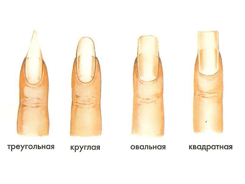 Форма маникюра